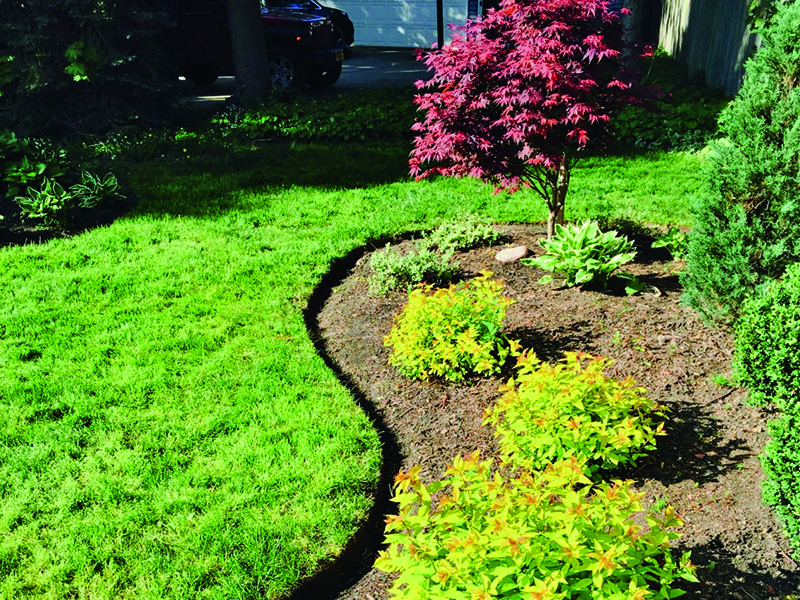 Get great results on all types of edging projects